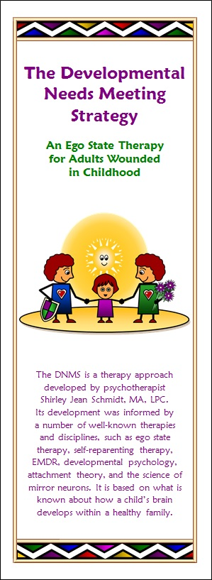 DNMS Brochure